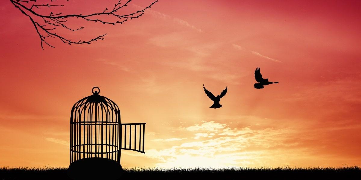 vrijheid als reden om te gaan ondernemen
