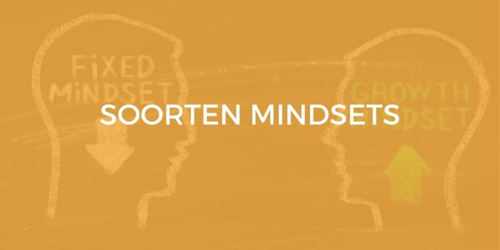 soorten mindset